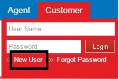 DHFL Login for New User