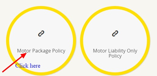Motor Package Policy
