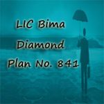 LIC Bima Diamond Plan